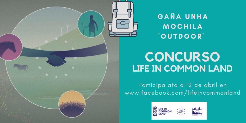 Concurso Life In Common Life